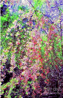 Painting - Weeping Cherry by Holly Martinson