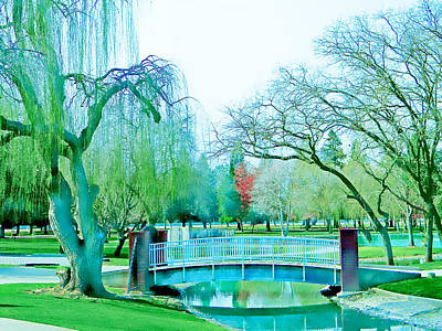 Photograph - Weeping Willow Bridge by Pacific Northwest Imagery