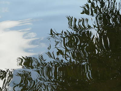 Photograph - Weeping Willow Reflection by Valerie Ornstein