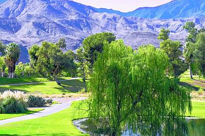 Photograph - Weeping Willow Tree In Desert Scene by Kirsten Giving