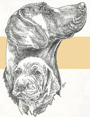Mixed Media - Weimaraner And Pup by Barbara Keith