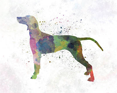 Weimaraner In Watercolor Print by Pablo Romero