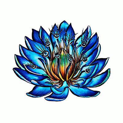 Lilies Drawings - Weird Multi Eyed Blue Water Lily Flower by Boriana Giormova