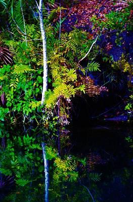 Target Threshold Watercolor - Wekiva Falls by Tamara Michael