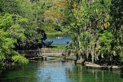 Photograph - Wekiwa Springs by Denise Mazzocco