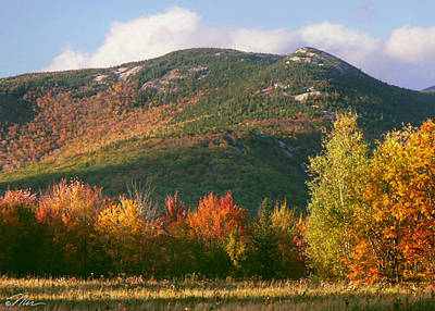 Photograph - Welch And Dickey Mountains by Nancy Griswold