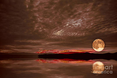 Photograph - Welcome Beach Supermoon by Elaine Hunter