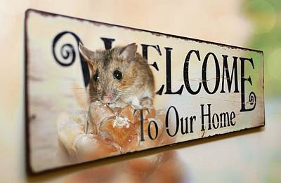 Mice Mixed Media - Welcome by Heike Hultsch