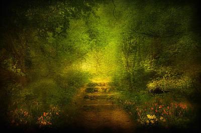 Fog Mist Mixed Media - Welcome Path by Svetlana Sewell