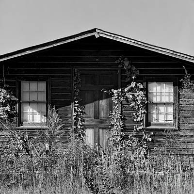 Photograph - Welcome Shack by Patrick M Lynch