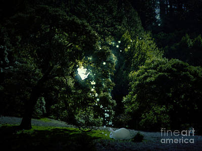 Pixie Digital Art - Welcome The Rabbit by Elizabeth Alexander
