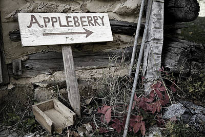 Photograph - Welcome To Appleberry by Pete Hellmann