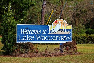Photograph - Welcome To Lake Waccamaw by Cynthia Guinn