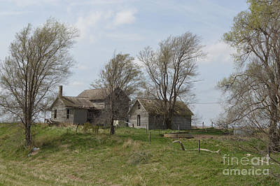 Photograph - Welcome To The Farm by Renie Rutten