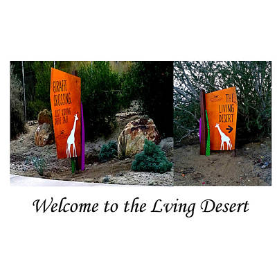 Photograph - Welcome To The Living Desert by Jay Milo