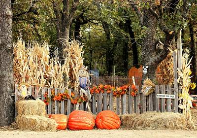 Photograph - Welcome To The Pumpkin Patch by Sheila Brown
