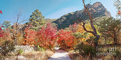 Photograph - Welcome To The Trapp Family Lodge At Mckittrick Canyon - Guadalupe Mountains National Park - Texas by Silvio Ligutti
