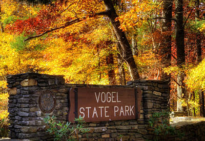 Yellow Photograph - Welcome To Vogel State Park by Greg Mimbs