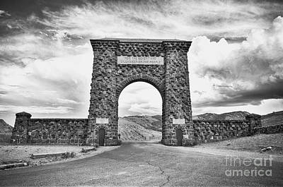 Photograph - Welcome To Yellowstone Too by Rachel Barrett