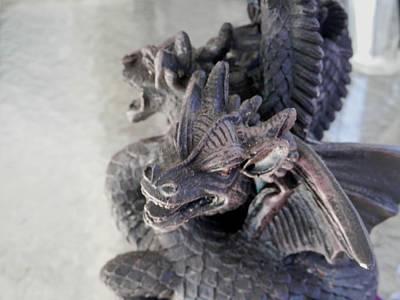 Photograph - Welcoming Dragons by Belinda Lee