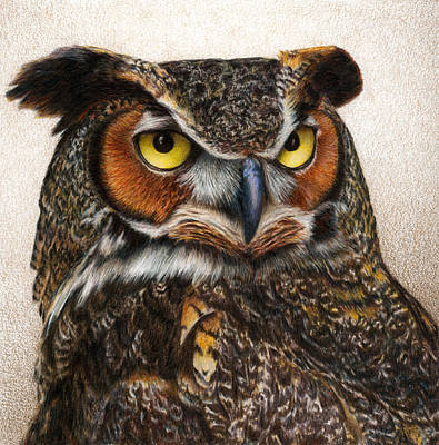 Colored Owl Painting - Well...  by Pat Erickson