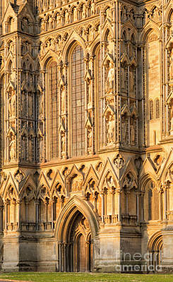 Wells Cathedral Golden Glow Art Print