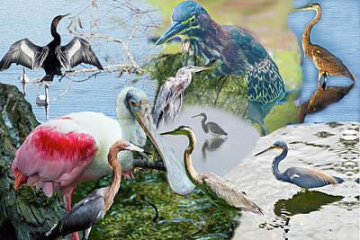 Digital Art - Welter Of Waterbirds by Gene Norris
