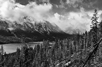 Wenatchee National Forest Black And White Art Print