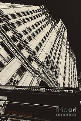 Photograph - Wendella by Andrew Paranavitana
