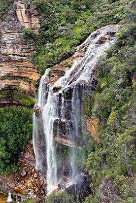 Photograph - Wentworth Falls by Nicholas Blackwell