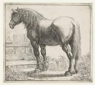 Painting - Werkpaard Bij Een Hek, Simon De Vlieger, 1610 - 1653 by Celestial Images