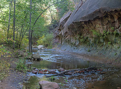 Photograph - West Fork 8051-8054--101817-pano1 by Tam Ryan