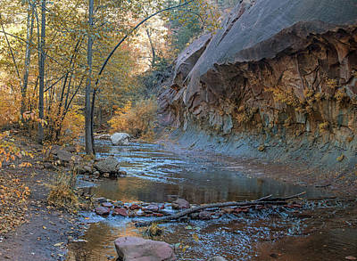 Photograph - West Fork 8051-8054--101817-pano2 by Tam Ryan