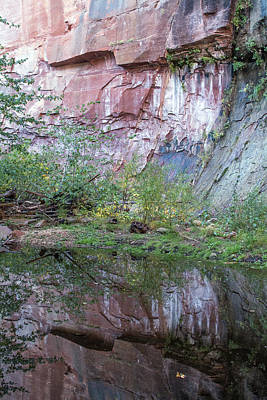 Photograph - West Fork Reflection 7917-101817-1 by Tam Ryan