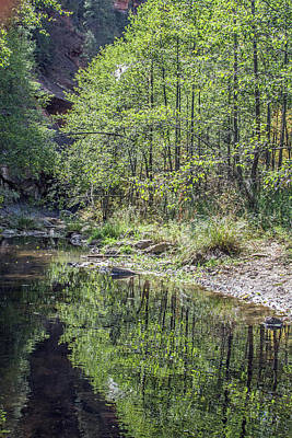 Photograph - West Fork Reflection 8065-101817-1 by Tam Ryan