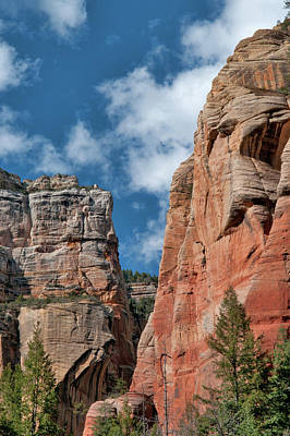 Wall Art - Photograph - West Fork Towering Wall by Reed Rahn