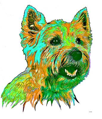 Westie Digital Art - West Highland Terrier by Marlene Watson