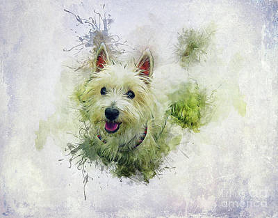Mixed Media - West Highland White Terrier by Ian Mitchell