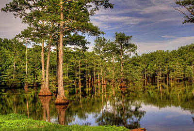 Photograph - West Monroe Bayou by Ester Rogers