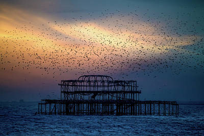 Photograph - West Pier Murmuration by Chris Lord