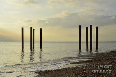 West Pier Supports Art Print by Nichola Denny