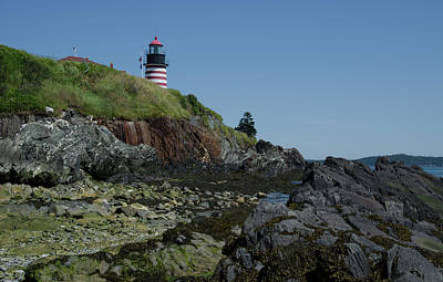 Photograph - West Quoddy A View From The Ocean Floor by Janice Adomeit