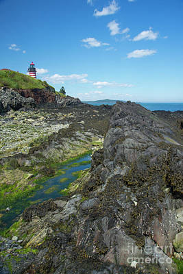 Photograph - West Quoddy Head Light by Alana Ranney
