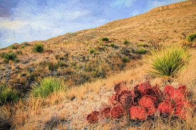 Photograph - West Texas Autumn by JC Findley