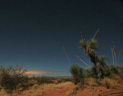 Photograph - West Texas Nights by JC Findley