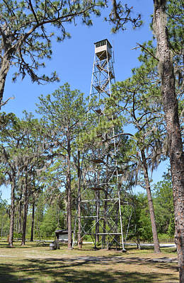 Photograph - West Tower - Lookout Tower In Osceola National Forest by rd Erickson