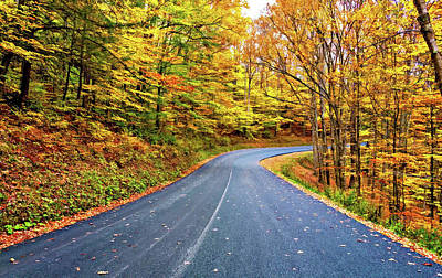 Photograph - West Virginia Curves - In A Yellow Wood - Paint by Steve Harrington