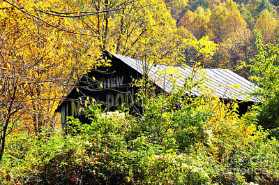 Mail Pouch Photograph - West Virginia Mail Pouch Barn by Thomas R Fletcher