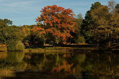 Photograph - Westbury Pond by William Kimble
