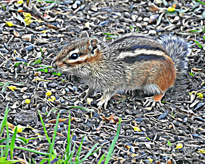 Photograph - Western Chipmunk by Kathy M Krause